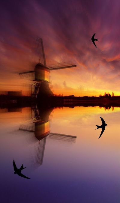 Holland Molen Zwaluwen Water Reflexy Waterspiegeling Windmolen Hollands Landschap Landscapes With WhiteWall