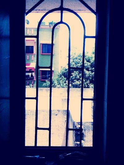 Outside_my_window