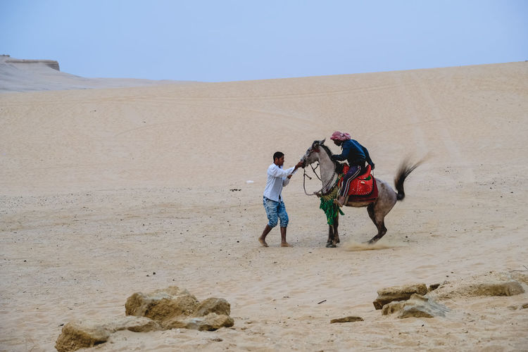 Man stopping arabian horse while standing on desert against sky
