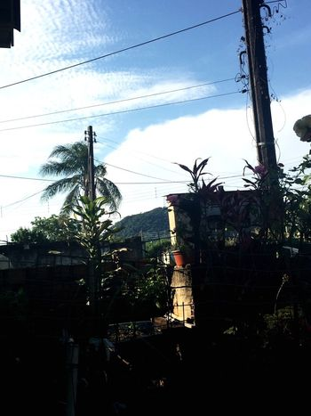 Power Line  Cable Tree Built Structure Architecture Sky Building Exterior Pole Power Cable Cloud Growth Day Outdoors Power Supply No People Cloud - Sky Solitude Outline Telephone Line BrazilPhoto Brasil Nature Brazil