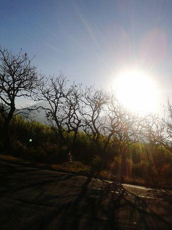 Iniciando la puesta del sol Excepcional Sunset Light And Shadow