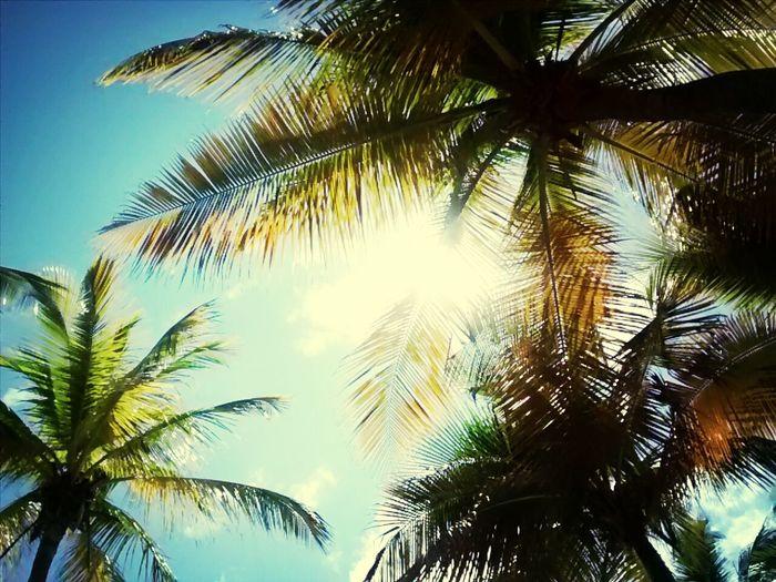 Beautiful Day Sun ☀ IlovePuertoRico Isladelencanto