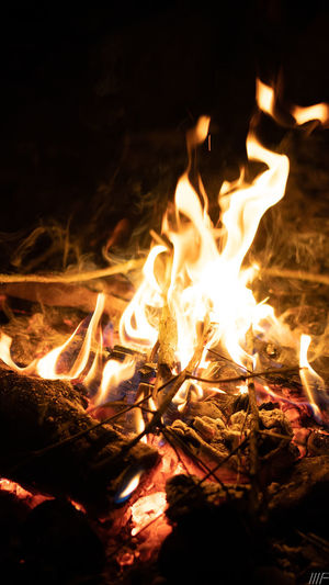 Fire Burning Flame Heat - Temperature Fire - Natural Phenomenon Night Nature Log Glowing Wood - Material No People Bonfire Wood Firewood Land Close-up Orange Color Illuminated Outdoors Camping Dark Campfire