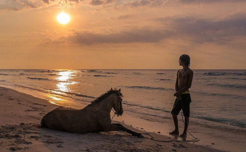 took a boat to the remote gili islands... watched a man and horse going about their daily washing rituals in the sea... then we both watched the sunset, not a word was utterred between us, this is my definition of paradise Sunset People Candid Clouds And Sky Barefoot The Traveler - 2015 EyeEm Awards The Great Outdoors - 2015 EyeEm Awards Gili Trawangan Gili Islands INDONESIA My Best Photo 2015 People Of The Oceans