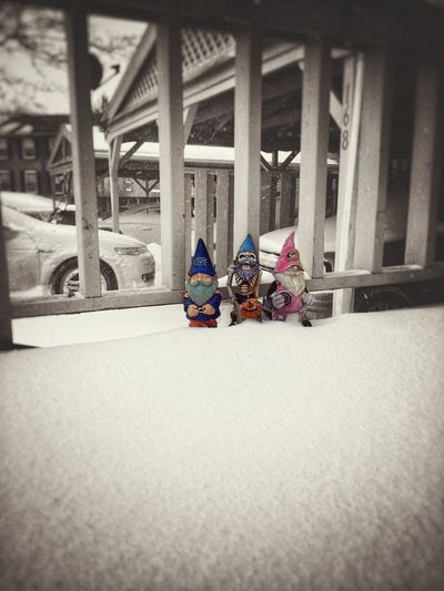 'Gnome'-ads passing through... Snow Gnomes Noir Winter Wonderland Garden Decoration Taking Photos Tadaa Community Toy No People Day Indoors