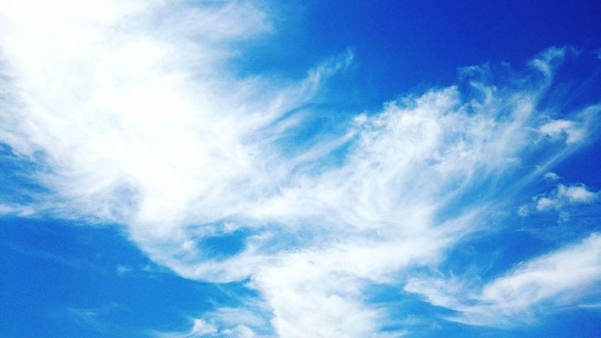 妳蒼白的惆悵…飄逸在我湛藍的思念裡……輕柔而深刻…明亮卻憂鬱……我伸手…一股觸不到的哀傷…淺淺劃過心底…… Taking Photos Hanging Out Relaxing Enjoying Life Clouds And Sky Skyporn Sky_collection Missing You