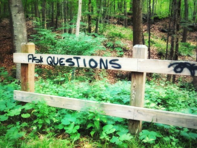 rural Graffiti on the Rails To Trails. Walking Around Taking Photos Summer Unplugged Check This Out Surreal Hidden Treasure In The Forest