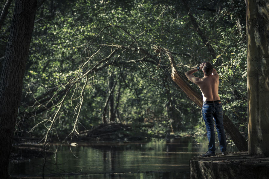 Back view of shirtless man in jeans standing and shouting on background of green pond and trees Laughing Adult Arms Raised Casual Clothing Day Forest Full Length Holding Human Arm Human Limb Jeans Lake Leisure Activity Men Nature One Person Outdoors Plant Shirtless Standing Tree Tree Trunk Trunk Water Young Adult