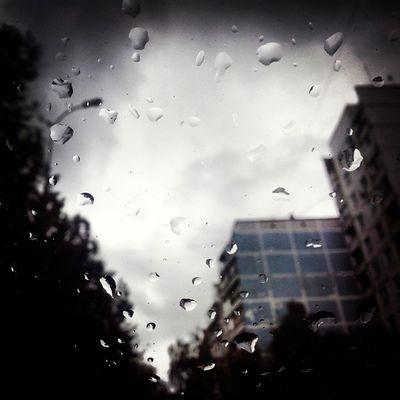 Дождь, осень, Отрадное и макро *0* идеально Дождь осень отрадное свао москва россия макро rain autumn svao moscow russia makro