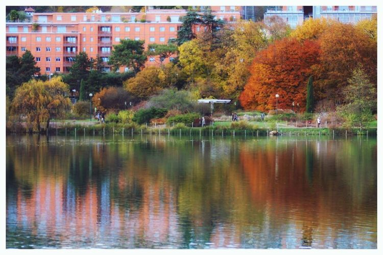 Beauty In Nature Reflection Autumn Outdoors Water Nature No People Lake Lyon City