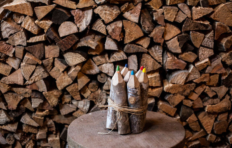 Colored Pencils On Table Against Stacked Wooden Logs