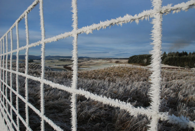 Fences & Beyond Beauty In Nature Close-up Day Fence Frozen Fence Ice On Fence Nature No People Outdoors Sky