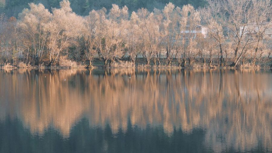 Autumn lake in Revine lago a small place in Veneto Italia 🇮🇹 EyeEm Selects No People Nature Backgrounds Pattern Full Frame Water Day Outdoors Tree Reflection Sky Plant Landscape