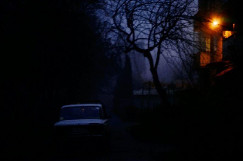 Fog Morning Streetphotography Light