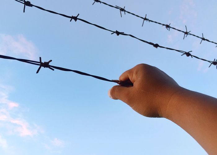 Prisoners who want freedom to climb the barbed wire at the prison wall Human Hand Hand Sky Human Body Part Holding One Person Fence Day Real People Barbed Wire Safety Wire Nature Boundary Personal Perspective Body Part Leisure Activity Barrier Outdoors Metal