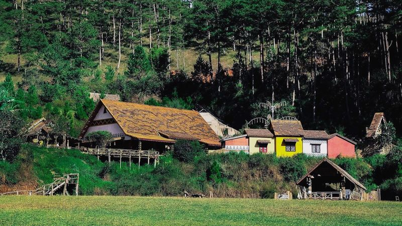 Một chút bình yên có được không? Peaceful Moment Peaceful Place Forest Colorful Dalat Travel Đà Lạt Vietnam Vietnamtravel