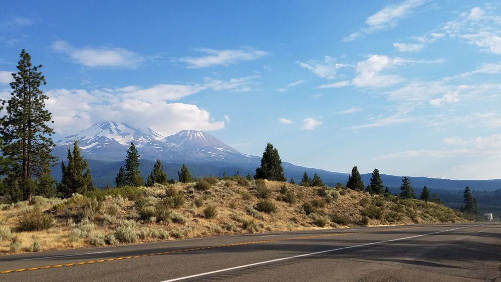 On the road again... Tree Cloud - Sky Mountain Landscape Outdoors No People Sky Day Travel Destinations Scenics Snowcapped Mountain Nature Mount Shasta, CA Rural Landscape highway Road Roadway Tranquility Idyllic Mindful Surreal Quality Of Life Dramatic Zen Gold Snow California Dreamin