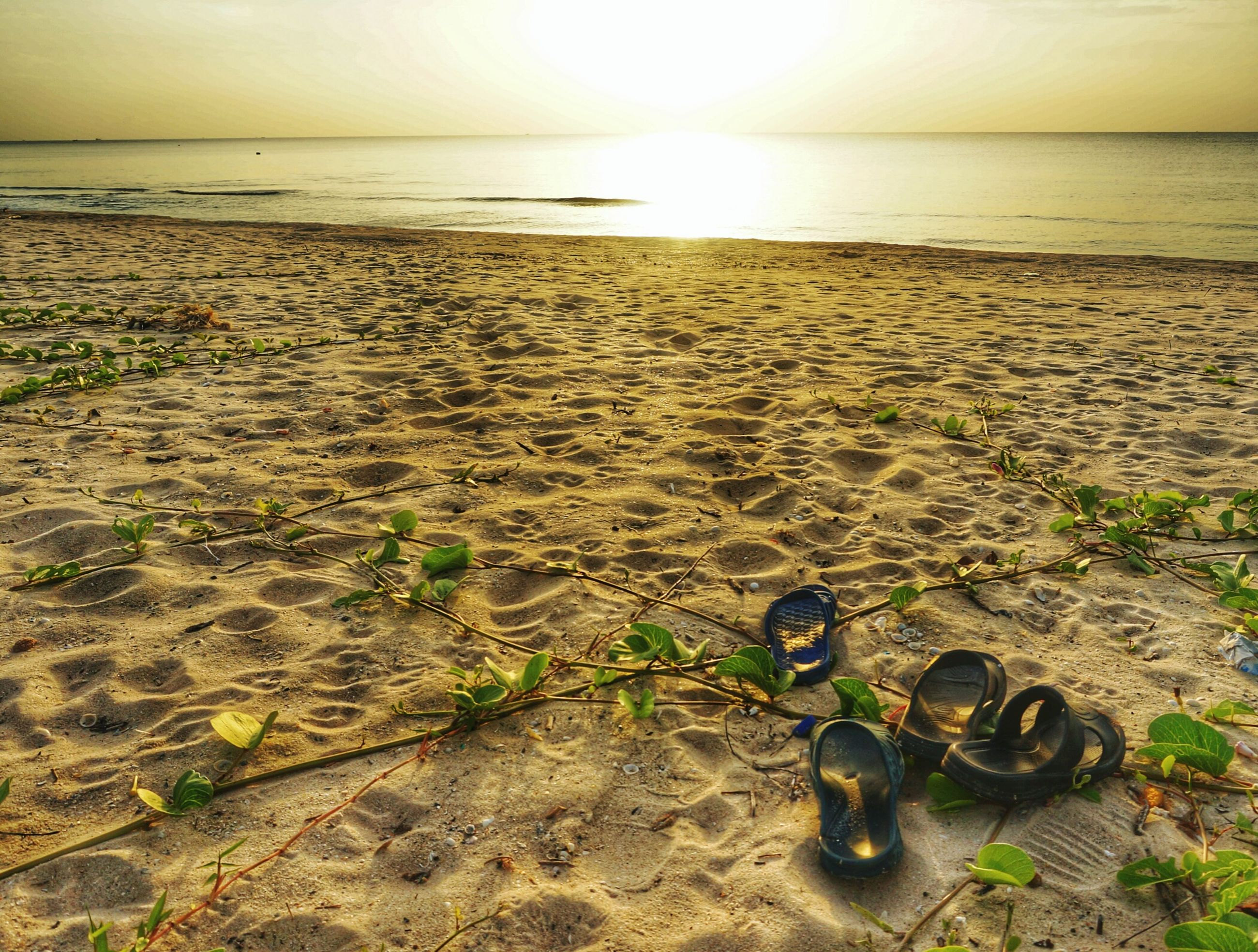 sea, horizon over water, beach, water, shore, tranquility, tranquil scene, scenics, sun, sand, sunset, sky, beauty in nature, sunlight, nature, idyllic, reflection, wave, remote, outdoors