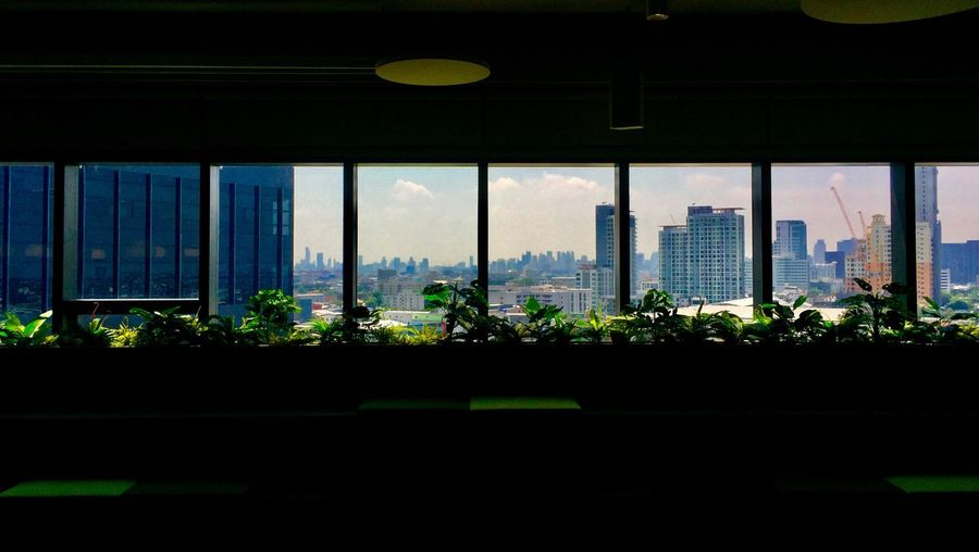 Panoramic view Architecture Built Structure Window Building Exterior City Sky Nature Day Outdoors Transportation Building Transparent No People Glass - Material Cityscape Office Building Exterior Plant Tree Skyscraper