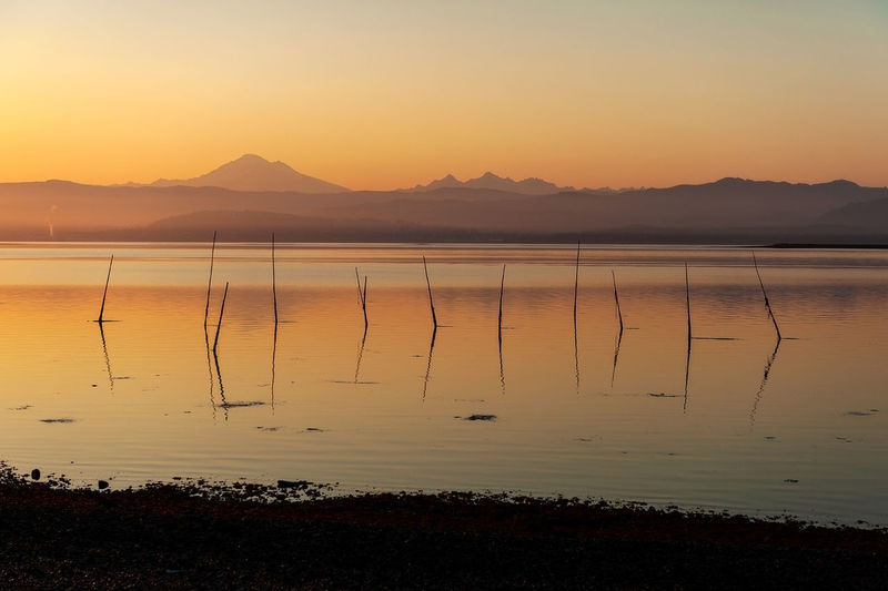 Bellingham Bay Fish Traps. With Mt. Baker in the background fishermen use poles to hang their nets to harvest sockeye salmon during a glorious sunrise. Beauty In Nature Water Sky Mountain Tranquil Scene Scenics - Nature Tranquility Orange Color Silhouette Idyllic No People Mountain Range Outdoors Waterfront Sunrise Morning Commercial Fishing Salmon Fish Trapped Netherlands Sockeye Chinook Bellingham Bay Pacific Northwest  Puget Sound Salish Sea Dawn Colorful Sea Ocean Mt. Baker Cascades Mountains North Cascades