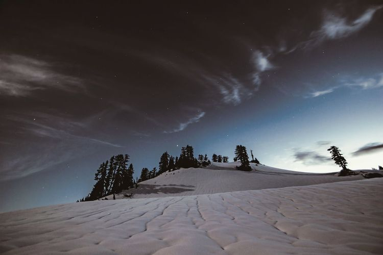 Night Landscape Snow Outdoors Beauty In Nature Mountain Nature Scenics Adventure EyeEmBestPics Mountain Landscape Landscape_Collection EyeEm Gallery EyeEm Best Shots - Landscape Snowcapped Mountain Tranquility Astronomy Star - Space Nightphotography Night Photography Nightshot Astrophotography Shades Of Winter
