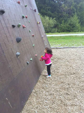 Activity Casual Clothing Child Childhood Climbing Climbing Wall Day Effort Females Full Length Girls Healthy Lifestyle Leisure Activity Lifestyles One Person Outdoors Physical Activity Pink Color Real People Rear View Sport Women