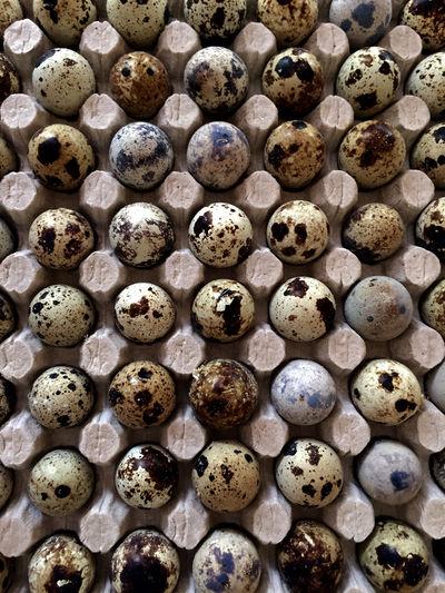 Full frame shot of rotten eggs in carton