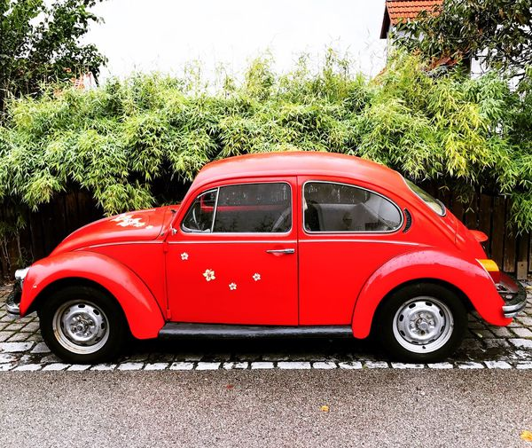 Transportation Land Vehicle Mode Of Transport Car Parking Old-fashioned Street Red Stationary Front View Day Vibrant Color Parked Outdoors Bug Beetle VW Beetle VW Käfer Tail Light