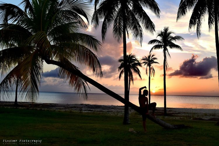 Chance Encounters Sea Sunset Palm Tree Water Tree Beach Outdoors Nature Vacations Sky Horizon Over Water No People Beauty In Nature Day Martial Arts Martialarts Martial Artist Isla De Juventud