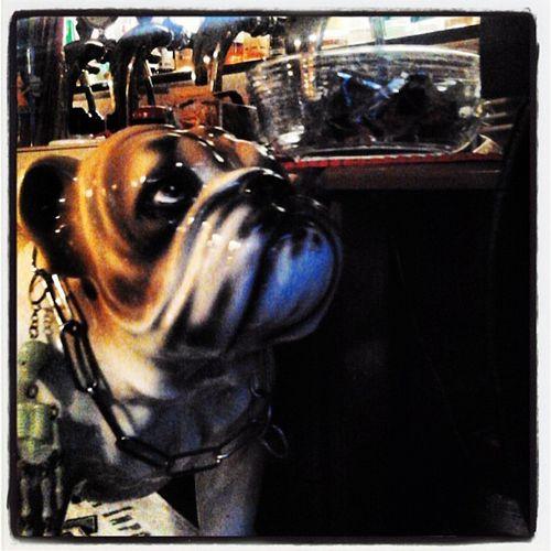 Birra Bulldog Birreria Capolinea18 torino pub