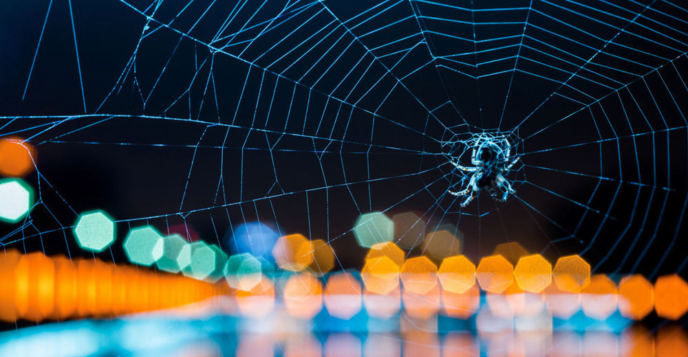 China Close-up Focus On Foreground Learn & Shoot: After Dark Night Spider