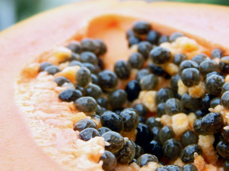 Abundance Close-up Detail Food Freshness Papaya Papaye PawPaw Ready-to-eat Seed