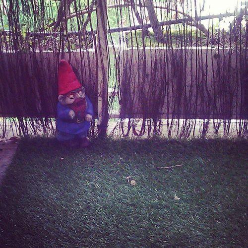 Gnomo Homedecor Terrace Garden Dwarf