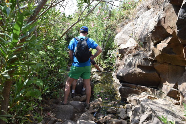 Adult Adults Only Adventure Athlete Effort Extreme Sports Forest Full Length Hiker Lifestyles Men Nature One Man Only One Person Only Men Outdoors People Real People Rock - Object Sport Sports Clothing Sportsman Traveling Tree Vitality