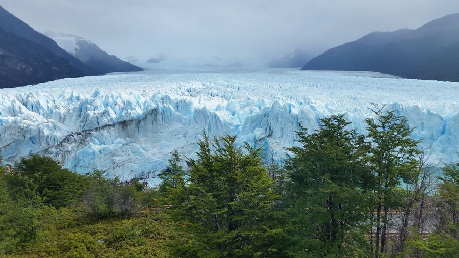 Perito Moreno. Patagonia. Argentina. Perito Moreno Patagonia Argentina Protecting Where We Play Glacier Glacier Tongue Nature Photography Naturelovers Southamerica Outdoors Ice Ice Baby Cold White Glaciers The Great Outdoors With Adobe Nature's Diversities Original Experiences My Year My View Finding New Frontiers Miles Away First Sold Photo Sold On Getty Images The Secret Spaces Neighborhood Map The Great Outdoors - 2017 EyeEm Awards Been There. Lost In The Landscape Perspectives On Nature Shades Of Winter An Eye For Travel Summer Exploratorium This Is Latin America The Great Outdoors - 2018 EyeEm Awards My Best Travel Photo