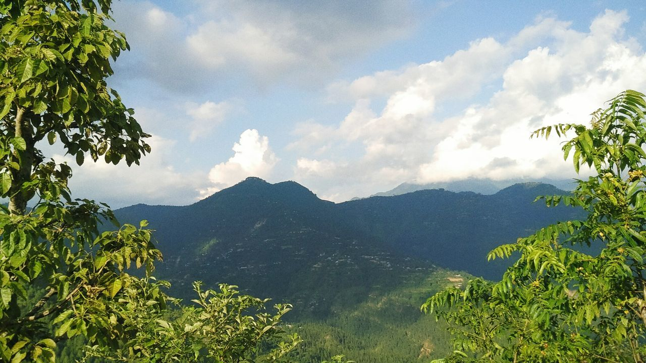 Nature is Calling Tree Scenics Mountain Tranquil Scene Sky Mountain Range Beauty In Nature Tranquility Cloud - Sky Nature Cloud Tourism Branch Non-urban Scene Day Growth Outdoors Green Sea Valley Nepali  Nepal Nepal Travel Nepal8thwonder