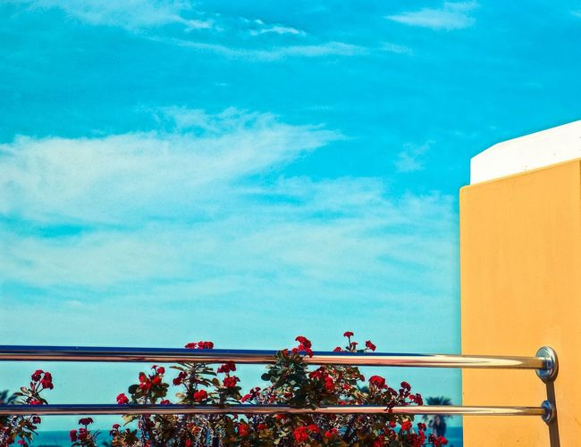 Arts Culture And Entertainment Atmospheric Mood Balcony Blue Sky Cloud Cloud - Sky Cloudscape Cloudy Culture Cultures Flowers Orange Color Outdoors Overcast Railing Silhouette Sky Storm Cloud Sunset Technology