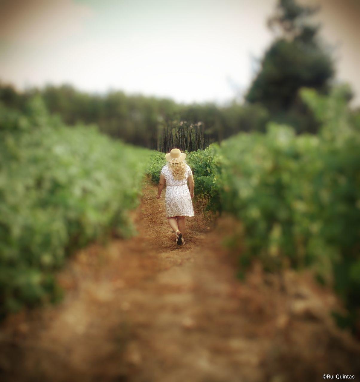REAR VIEW OF WOMAN WALKING ON FARM
