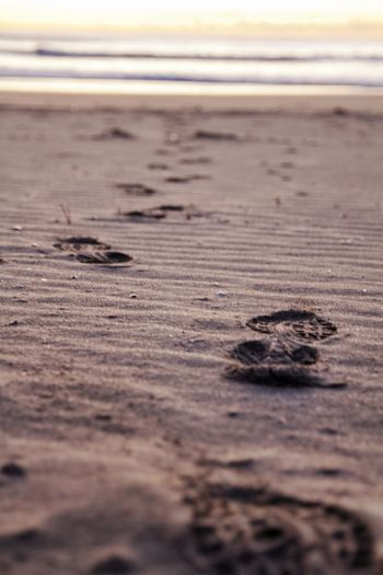Footprints It's
