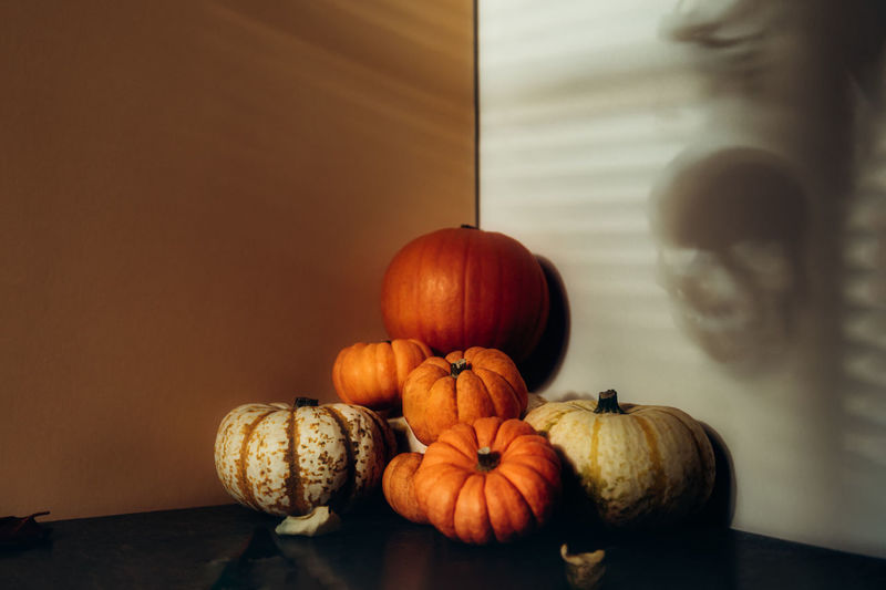 Pile of different pumpkins with strong shadows. thanksgiving holiday