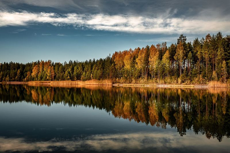 Autumn lake reflection Reflection Autumn Autumn colors Autumn Collection Reflection Sky Water Beauty In Nature Tranquility Tree Lake Cloud - Sky Scenics - Nature Nature Tranquil Scene Waterfront No People Growth Non-urban Scene Idyllic Forest Outdoors Land