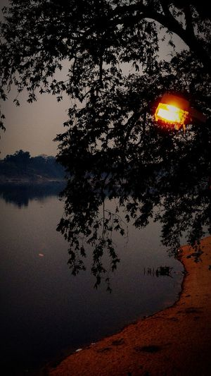 When there is light, there is shadow.🙂 Light And Shadow Astronomy Tree Water Sunset Reflection Sky Close-up Lakeside