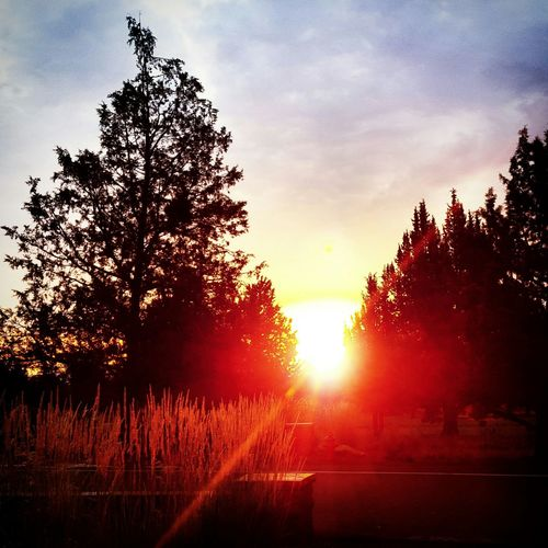 Sunrise Eaglecrest Taking Pictures Skylovers PNW Beautiful Sun ☀ Color My World Summer Pinch Pinch