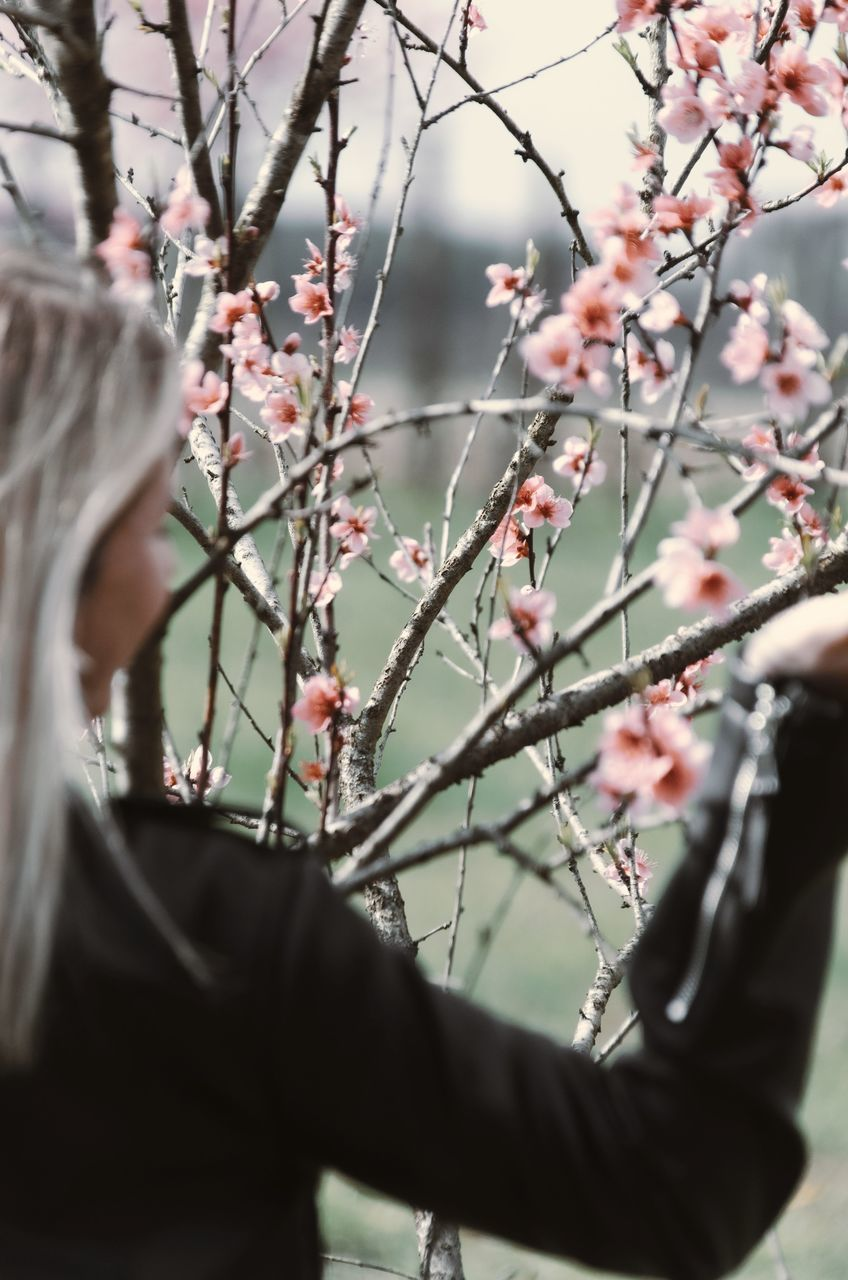 LOW ANGLE VIEW OF PEOPLE ON FLOWERING TREE