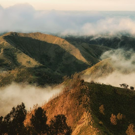 fog on the hill