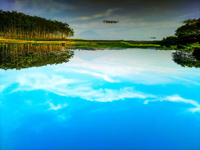 Water Tree Swimming Pool Blue Reflection Sky Cloud - Sky Standing Water Lakeshore Lakeside Reflection Lake Reflecting Pool Salt Basin Salt Lake Calm Countryside Water Surface Waterfront