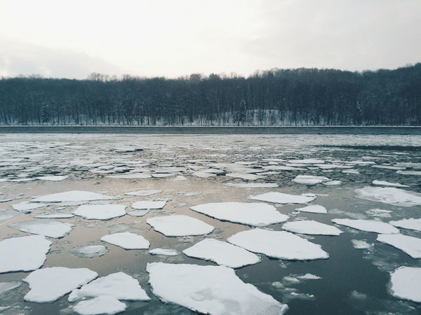 Water Nature Reflection Tree Sky Non-urban Scene Floating On Water No People Outdoors Beauty In Nature Day Winter Ice Melting Ice Melting Snow Moscow Moscow River Luzhniki Winter River The Great Outdoors - 2017 EyeEm Awards Shades Of Winter