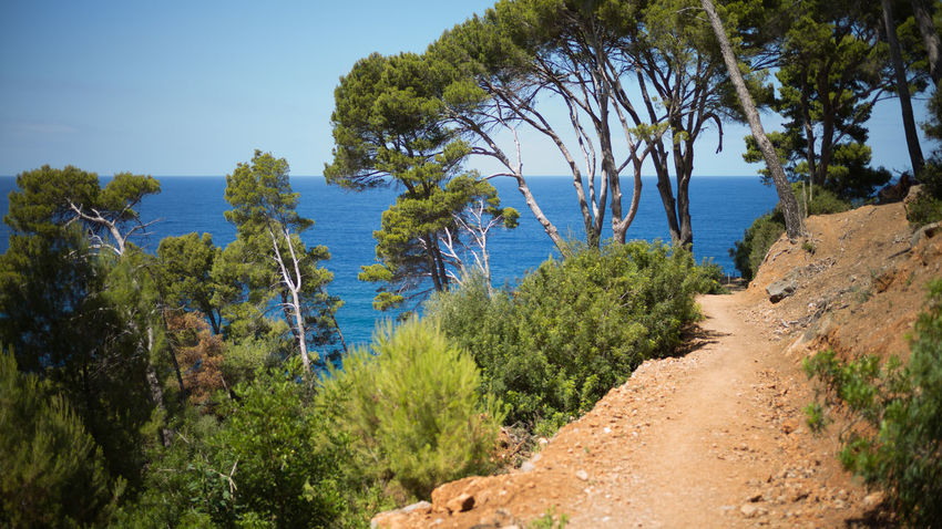 Beauty In Nature Blue Blue Sky Day Hiking Mallorca Nature No People Outdoors Path Scenics Sea Tourism Tree