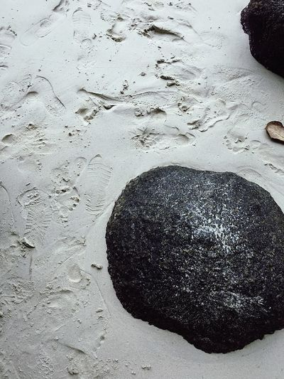 Land Beach Sand No People Nature High Angle View Water Day Outdoors Close-up Solid FootPrint Wet Sea Black Color Rock Tranquility Art And Craft Rough