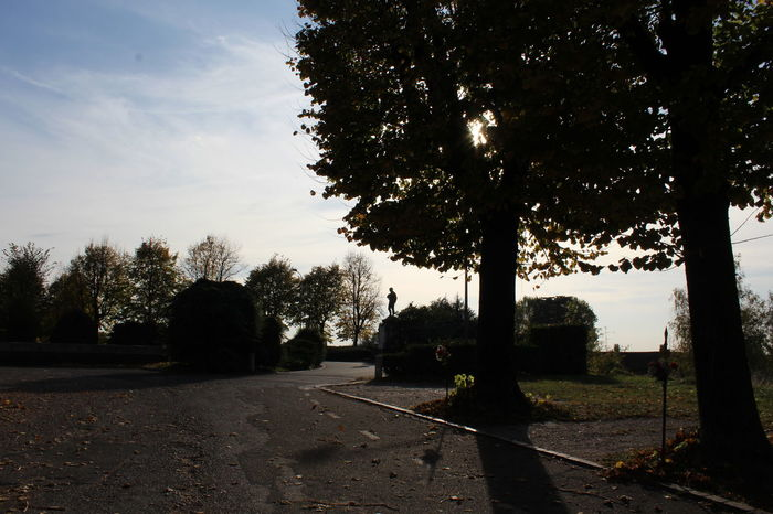 Afternoon Fall Beauty Shadows & Lights Beauty In Nature Day Nature No People Road Scenics Silhouette Sky Tranquil Scene Tree